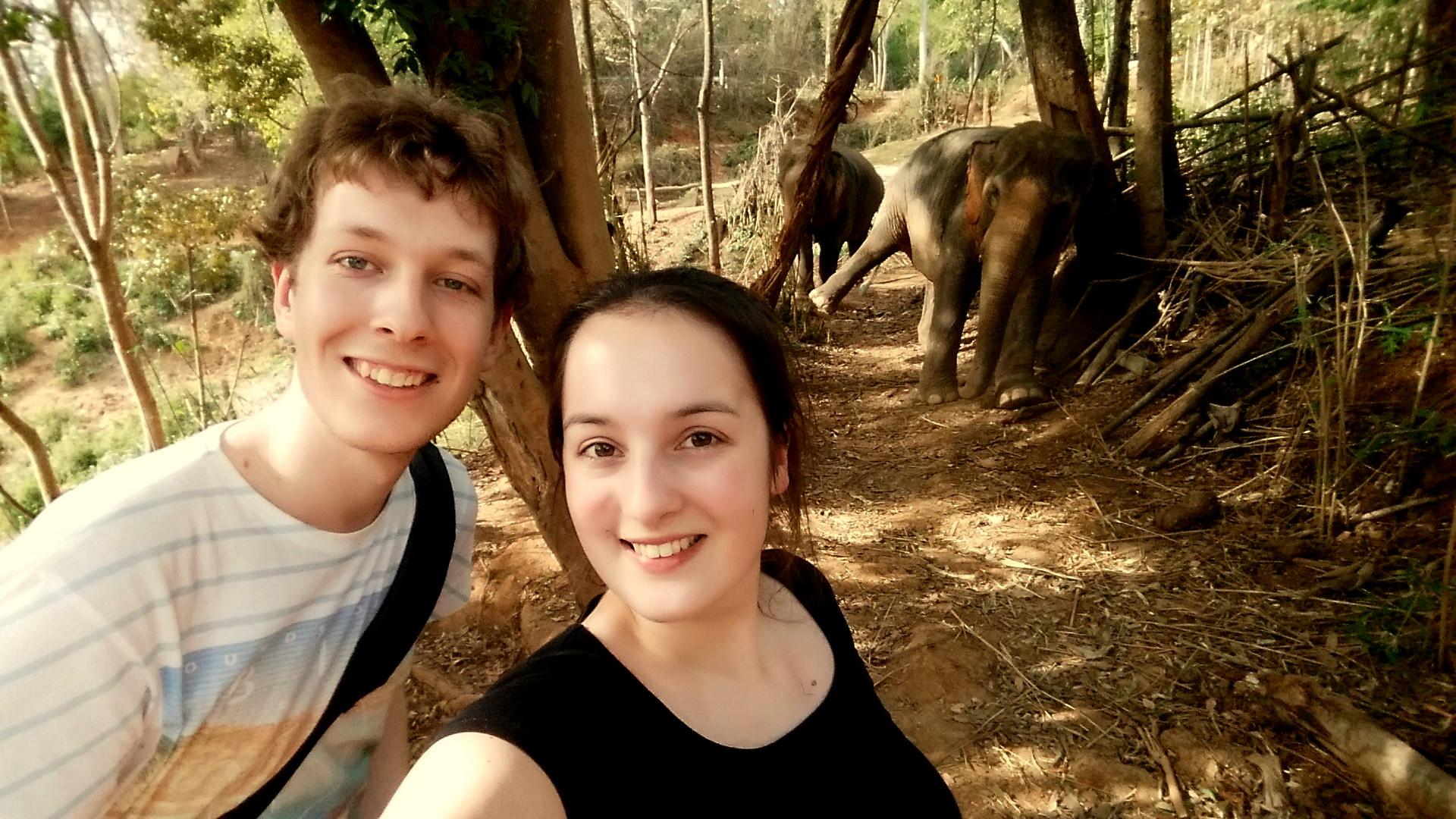 114. Een olifant wassen