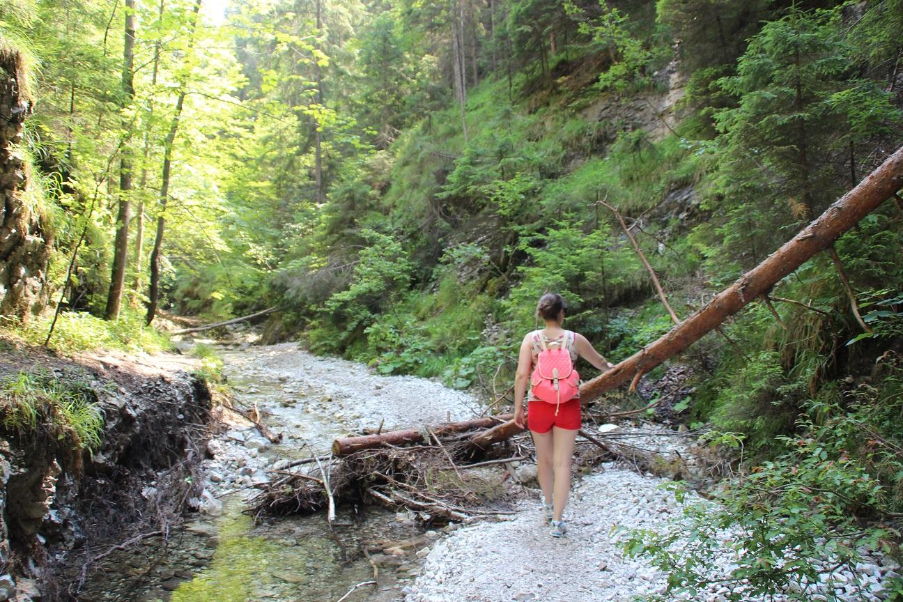Slowaaks paradijs